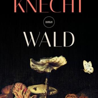 """""""Wald"""" – Doris Knecht"""